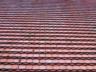 dak dekker
